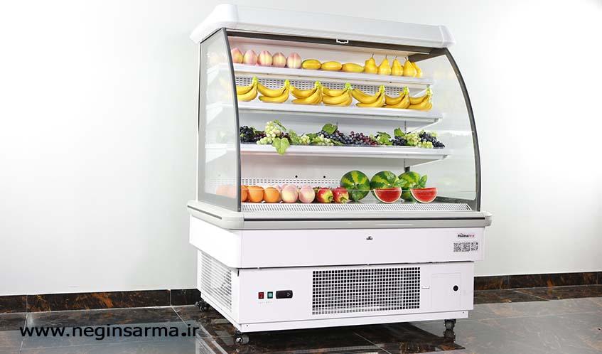 خرید انواع یخچال صنعتی ویترینی-شرکت نگین سرما